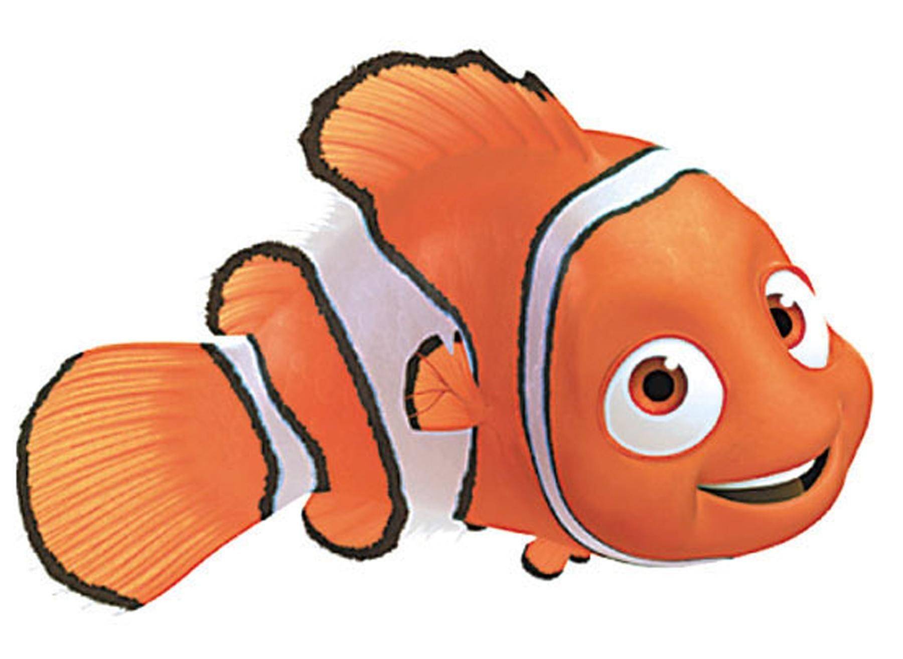 Sea animals | Baamboozle